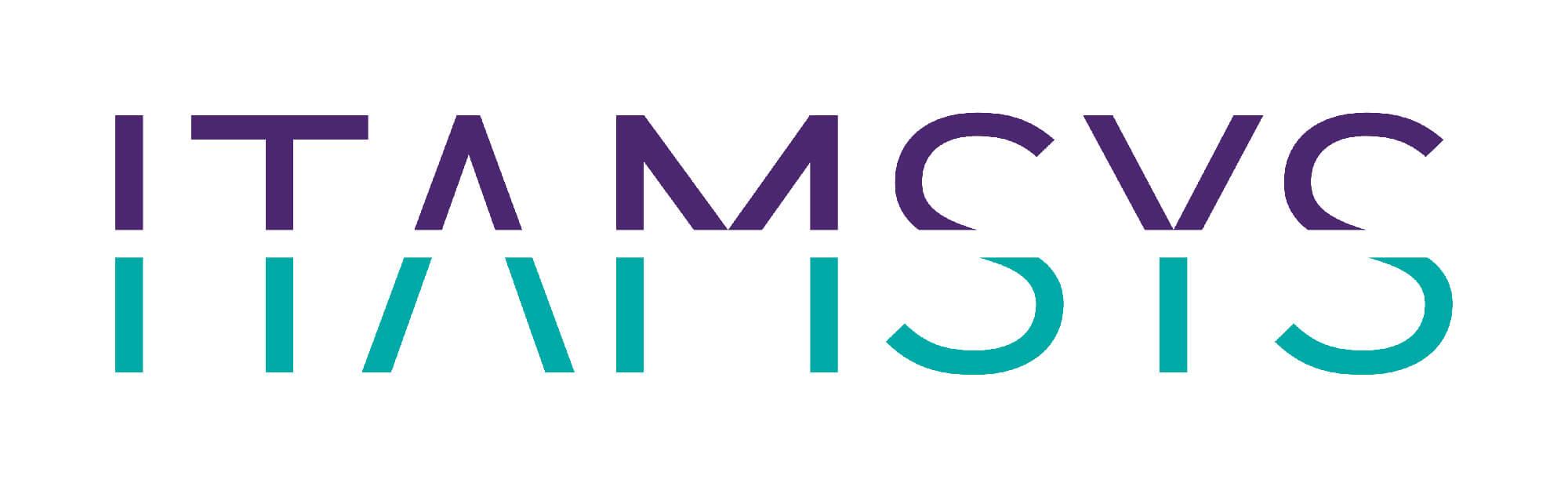 ITAMSYS : Intégrateur ITSM / Supervision à Lyon : EasyVista - Nexthink